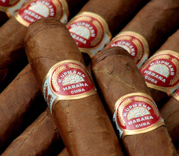 А вот еще родня самый обыкновенный табак